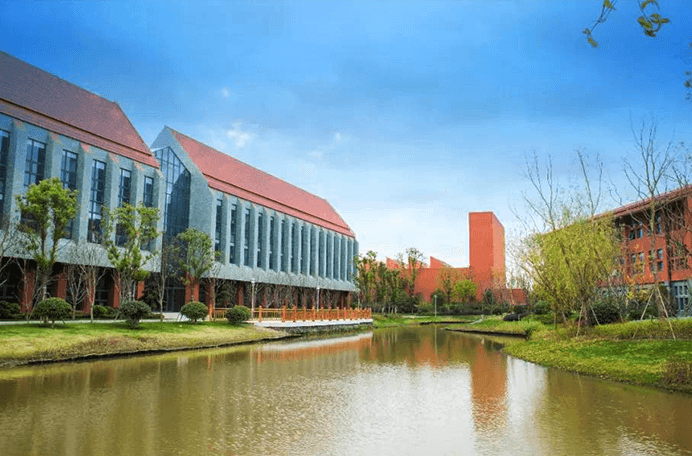 北外附属龙游湖外国语学校图片