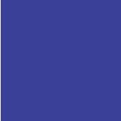 上海市民办协和双语尚音学校校徽logo图片