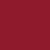 山东省青岛第九中学青岛外语学院国际高中(中加班)招生简章