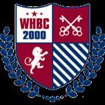 武汉外国语英中学校校徽logo图片