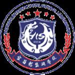 宜昌龙盘湖国际学校校徽logo图片