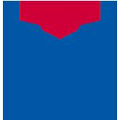 重庆耀中国际学校校徽logo图片
