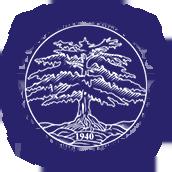 重庆第二外国语学校国际部校徽logo图片