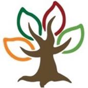 长春盈佳外国语学校校徽logo图片