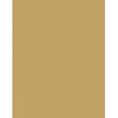 成都博骏公学校徽logo图片