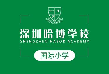 深圳哈博学校国际小学图片