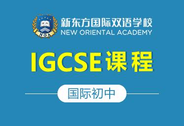 新东方国际初中(IGCSE课程)图片