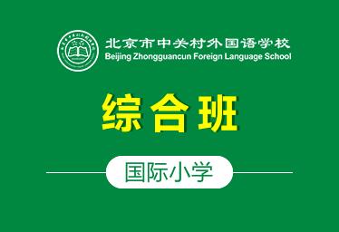 中关村外国语国际小学(综合班)图片