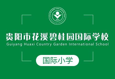 贵阳花溪碧桂园国际学校国际小学图片