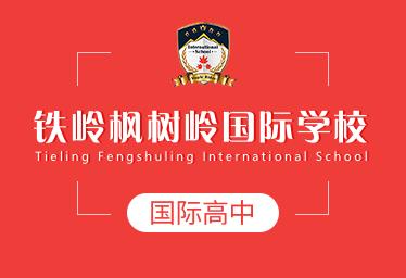 铁岭枫树岭国际学校国际高中图片