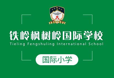 铁岭枫树岭国际学校国际小学图片