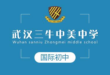 武汉三牛中美中学国际初中图片