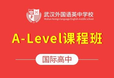 武外英中学校国际高中(A-Level课程班)图片