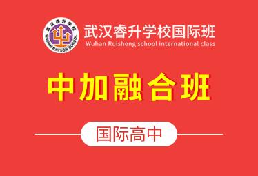 武汉睿升学校国际高中简章图片