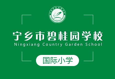 宁乡市碧桂园学校国际小学图片