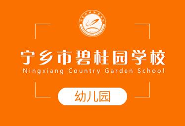 宁乡市碧桂园学校国际幼儿园图片