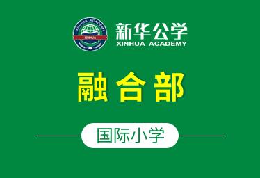 合肥新华公学国际小学(融合部)图片