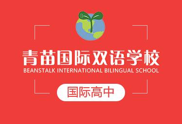 青苗国际双语学校国际高中图片