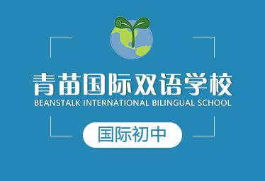 青苗国际双语学校国际初中图片