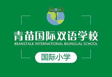 青苗国际双语学校国际小学图片