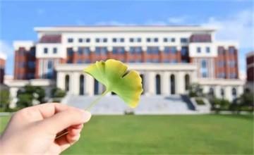 白露园蔬 | 在青岛威德明特双语学校迎接初秋到来!图片