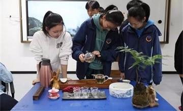 传统文化融入国际课堂,MYP教室飘出阵阵茶香——宁波华茂国际学校图片