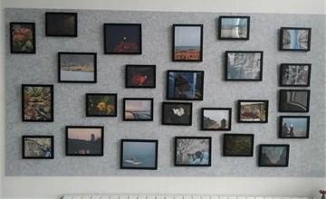 青岛威德明特双语学校中学部摄影展   用少年的视角看世界图片
