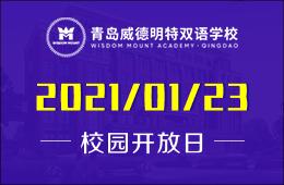 2021年初青岛威德明特双语学校校园开放日(小/初/高专场)图片