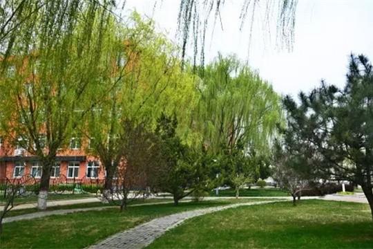 北京市新府学外国语学校校园风景图集