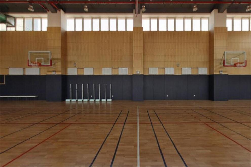 天津惠灵顿国际学校体育馆图片