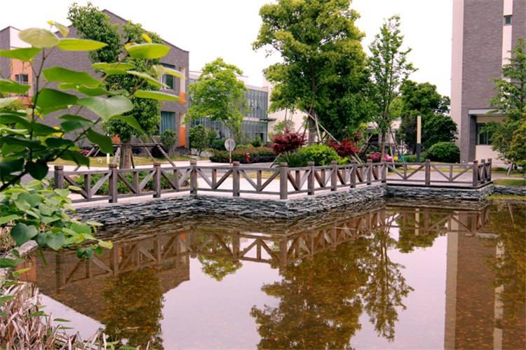 宁波滨海国际合作学校校园风景图集