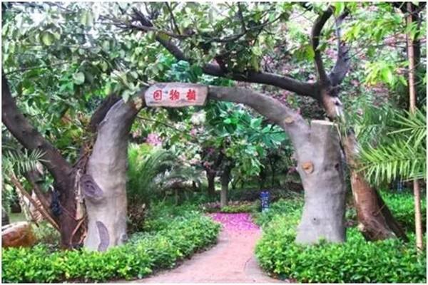 深圳桃源居中澳实验学校植物园图集