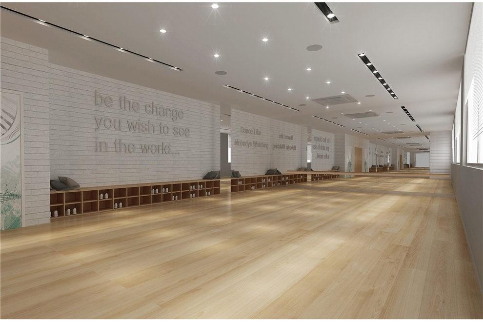 中黄书院美国GIA国际高中舞蹈室图集