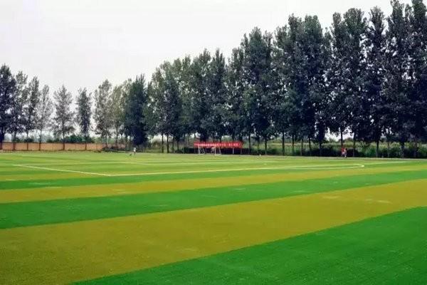 西安博爱国际学校美丽风景图集