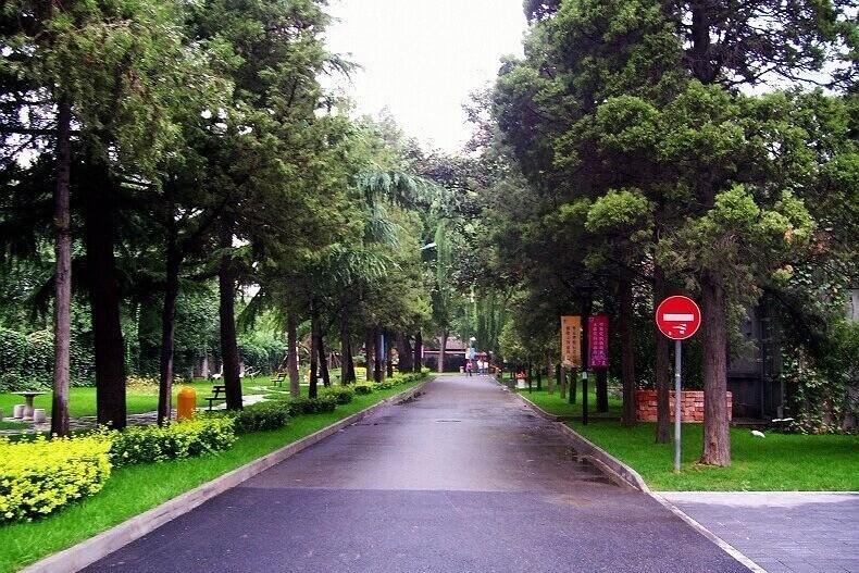 北京外国语大学附校朝阳双语学校校园风景图集