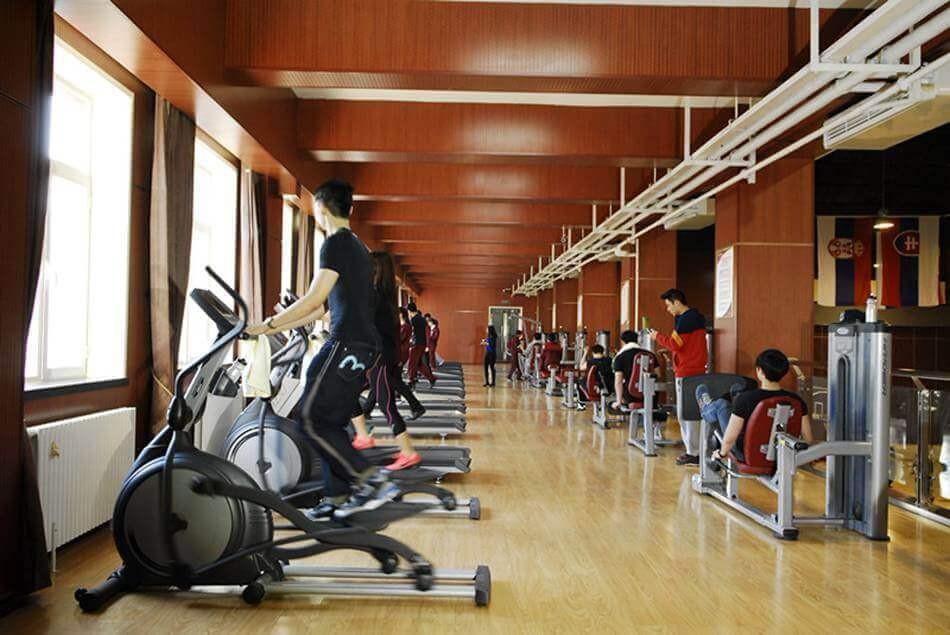 北京王府学校运动场所图片03