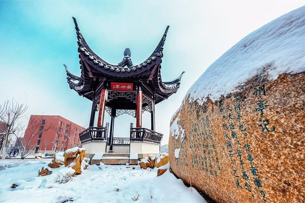 天津大学A-Level国际教育中心冬季景观图集