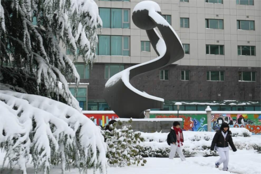 北京市八一学校国际部冬季美景图集