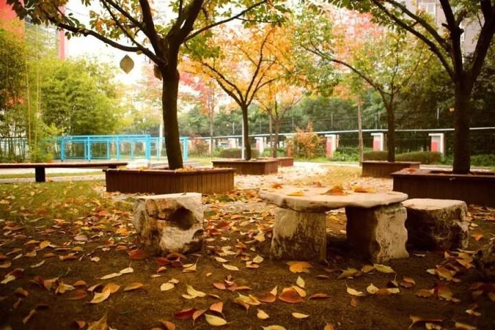 西安高新国际学校学校景观图集
