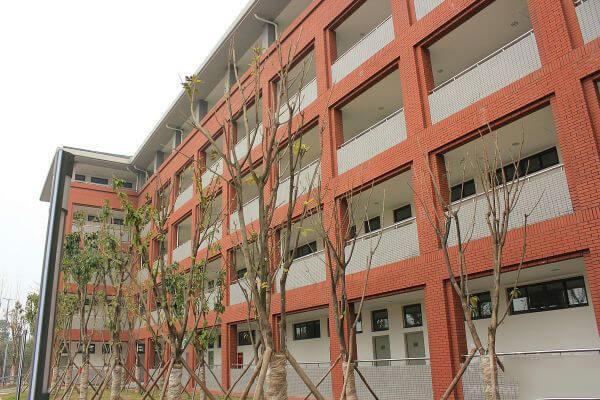 成都七中万达学校国际部校园环境图片03