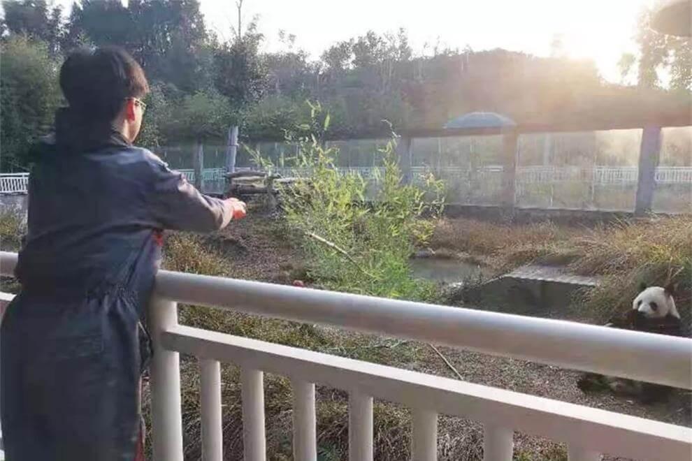 南通崇川外国语学校志愿者之旅图集