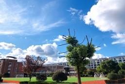 扬州市江都区国际学校校园风景图集