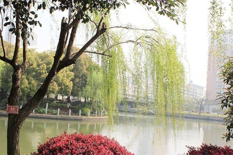 温州市第二十一中学国际部校园风景图集
