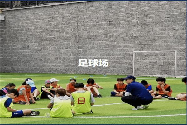 青岛MTI国际学校足球场图集