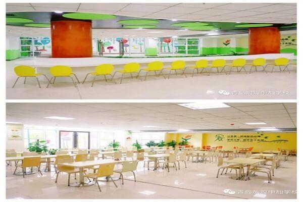 青岛加煌中加学校餐厅图集