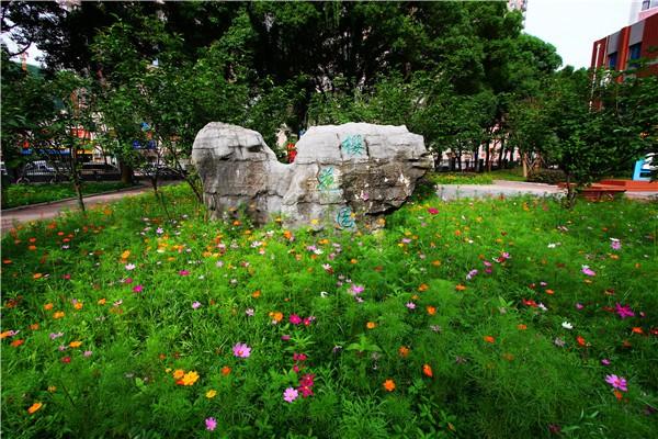 武汉市洪山高级中学国际部校园环境图集
