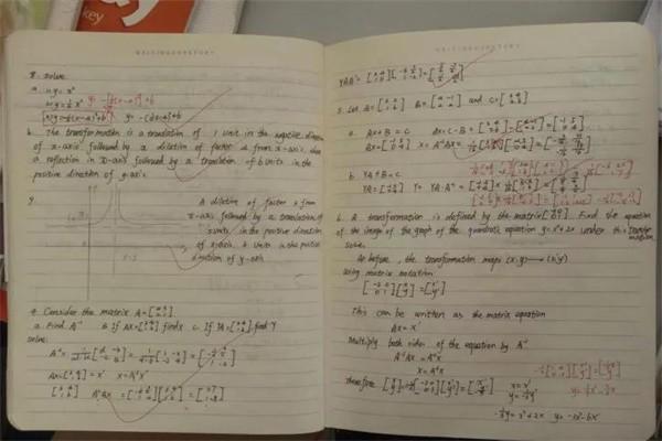 武汉外国语学校国际班作业图集