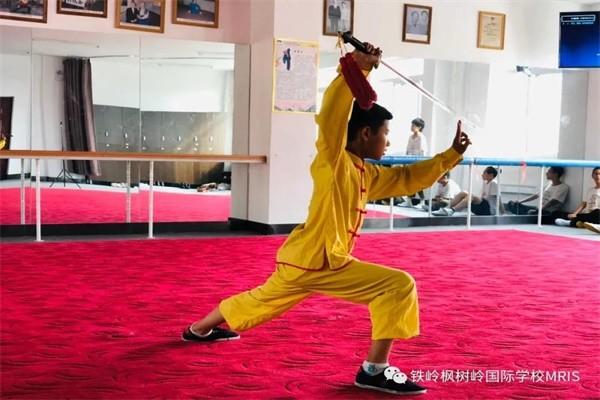铁岭枫树岭国际学校武术比赛图集