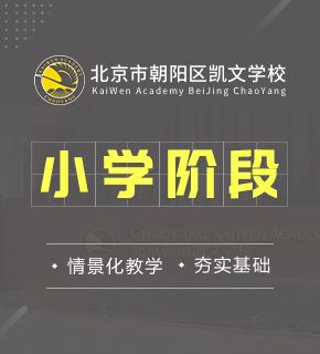 北京市朝阳区凯文学校图片