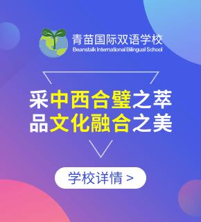 青苗国际双语学校图片